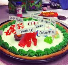 For the Kids School Project Plant Cell Cookie Cake