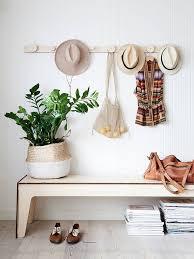 10 zimmerpflanzen für den schatten