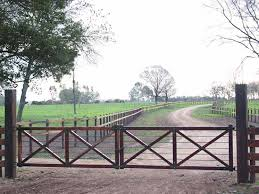 Driveway Fence For Dogs