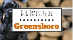 Bed And Biscuit Greensboro Nc by 10 Wonderful Dog Trainers In Greensboro Nc Herepup