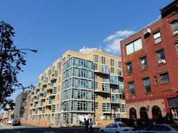 Bed Stuy Gentrification by Topie Impitoyable Colonial Architectures And Situated