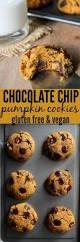 Vegan Pumpkin Muffins Applesauce by Best 25 Sugar Pumpkin Ideas On Pinterest
