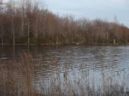 Laurel Bed Lake by Elevation Of Richlands Va Usa Maplogs