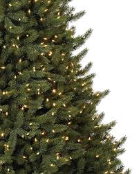 75 Foot Christmas Tree by Vermont White Spruce Tree Balsam Hill