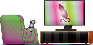 katze fernsehen maus kostenloses bild auf pixabay