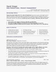 100 Basic Resume Example Sample Team Leader Valid In Pdf Valid Vita