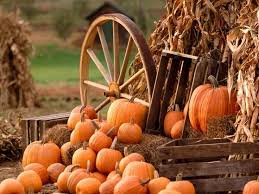 Pumpkin Patch Parker County Texas by 38 Best Pumpkin Patch Images On Pinterest Pumpkin Patches Fall