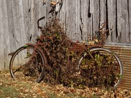 Rusty Bike | Things I Love | Pinterest | Bicycling And Abandoned Bills Old Bike Barn Museum September 24 2016 Free Spirit Album On Imgur March 2017 Blog 10 X 12 White Rectangle Number Plate Sold 1929 Monet Goyon 250cc Type At French Classic Vintage Gophers And Cheese Donnie Smith Show 2013 Part 5 Kawasaki 8083 Kz550 Repair Manual Midwest Moto Swap
