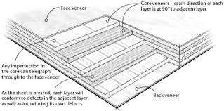 choose the right types of plywood u2013 popular woodworking magazine