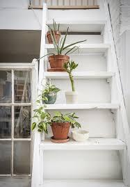 zimmerpflanzen für gesunde raumluft ikea deutschland
