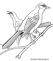Arkansas State Bird And Northern Mockingbird Coloring Page