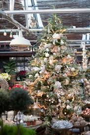 Fraser Christmas Tree Care by 180 Best Christmastide Images On Pinterest Lantern Personal