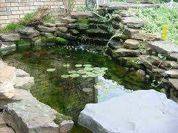 Backyard Fish Pond Diy Swimming Kits Home Depot - Lawratchet.com How To Build A Backyard Pond For Koi And Goldfish Design Building Billboardvinyls 10 Things You Must Know About Ponds Diy Waterfall Garden Pictures Diy Lawrahetcom Making Safe With Kits The Latest Home Part 2 Poofing The Pillows Decorations Interesting Gray White Ornate Rock Gorgeous Backyards Beautiful 37 A Pondless Blessings Simple House Small