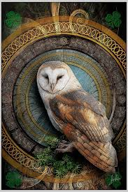 824 Best Hoots. Images On Pinterest | Abcs, Alphabet Print And Art ... 382 Best Barn Owls Images On Pinterest Barn Owl Photos And Beautiful My Sisters Favorite It Used To Be Mine Pin By Hans De Graaf Uilen Bird Animal Totem Native American Zodiac Signs Birth Symbolism Meaning Dreams Spirit 1861 Snowy Saw Whets 741 Owls Birds 149 Animals 2 Snowy Owl Necklace Ceramic Pendant The Goddess Touch Animism Youtube Pole Trollgirl Deviantart