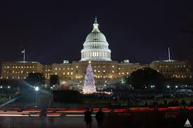 Types Of Christmas Tree Lights by Capitol Christmas Tree Architect Of The Capitol United States