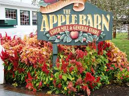 Apple Barn In Pigeon Forge, TN. LOVED! | My Travels Along The Way ... Candle Cottage Located In The Village Gatlinburg Tennessee Apple Barn In Seerville There Is So Much Delicious Food At The Applewood Farmhouse Grill Complex Three Days Pigeon Forge Southeastern Traveler Should You Dine At Restaurant And Cider Mill Menu Prices General Store Tn Winery Vacation Review Of By Local Expert Comfort Inn Valley Bookingcom 25 Trending Tennessee Ideas On Pinterest