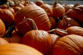 Pumpkin Patch Downtown Okc by 28 Things To Do In And Around Tulsa For Halloween U2014 From Haunted