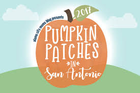 Pumpkin Patches In Colorado Springs 2014 by Pumpkin Patches Abound In San Antonio And Around