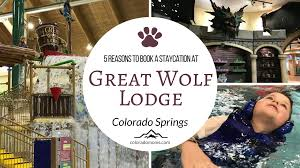 Pumpkin Patches Around Colorado Springs by 5 Reasons To Stay At Great Wolf Lodge Colorado Springs