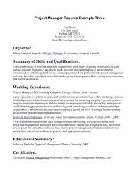 Project Manager Resume Skills Luxury Introductory Statement Examples Vatoz Atozdevelopment Co