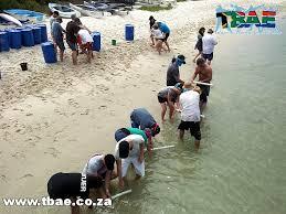 Team Building Activities On The Beach