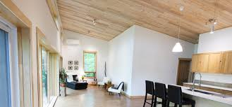 100 Wood Cielings Installing Ceilings Cost Compared To Drywall Ecohome