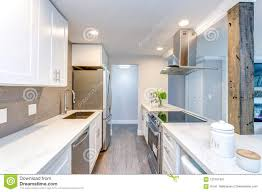 100 Small Modern Apartment White Kitchen In Stock Image Image