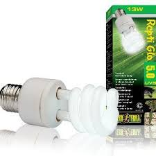 Reptile Heat Lamps Uk by Reptile Heating Lamps Lighting U0026 Uvb Bulbs Thermometers Pet