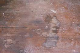 Dog Urine Wood Floors Vinegar by Rowhouse Rehab Rescuing Our Floors From Cat Developments Wsj