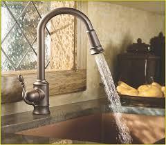 Delta Savile Faucet Manual by Delta Kitchen Faucet Replacement Parts Lowes Home Design Ideas