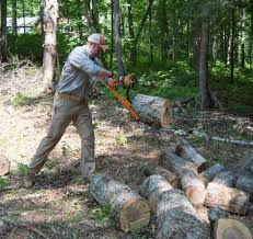 Forestry MultiTool Combines A Log Hauler, Cant Hook, And Timberjack