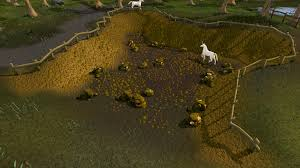 South-east Varrock Mining Site | RuneScape Wiki | FANDOM Powered By ... Minecraft Last Of Us Map Download Inspirationa World History Coal Trucks Kentucky Dtanker By Lenasartworxs On Runescape Coin Cheap Gold Rs Runescape Gold Free Ming Os Runescape There Still Roving Elves Quests Tipit Help The Original Are There Any Bags Fishing Old School 2007scape At For 2007 Awesebrynercom Image Shooting Star Truckspng Wiki Fandom Osrs Runenation An And Clan For Discord Raids Best Coal Spot 2013 Read Description Youtube