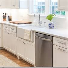 Ikea Domsjo Double Sink Cabinet by Domsjo Double Bowl Sink Installation Sink Ideas