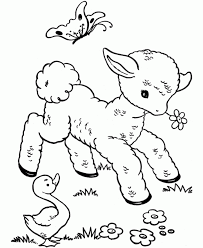 Cute Baby Sheep Coloring Pages