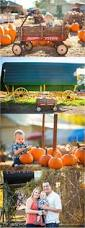Pumpkin Patch Farms Raleigh Nc by Pyner Photography At Hall Family Farm In South Charlotte Nc 5