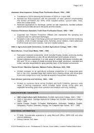 Cv Simple Examples Uk Job