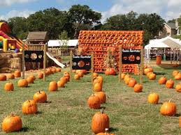 Oak Glen Pumpkin Patch Address by Flower Mound Pumpkin Patch Art U0026seek Arts Culture For