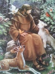 best 25 feast of st francis ideas on francis of