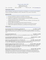 Resume Summary Example Examples Basic Accounting Resume Sample Valid ...