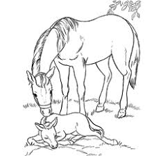Momma Horse With Her Foal Coloring Pages