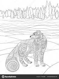 Los Animales Polares Colección De Vector De Animales Polar Oso