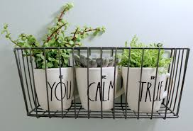 Best Plant For Bathroom by Bathroom Design Awesome Best Hanging Plants For Bathroom