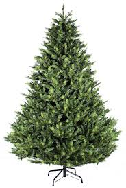 Qvc Christmas Tree Hugger by Best 25 Grand Fir Ideas Only On Pinterest Tree Seedlings