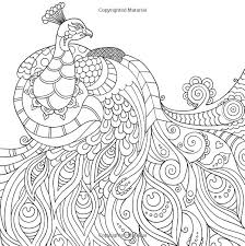 Peacock Wildlife Coloring Pages Colouring Adult Detailed Advanced Printable