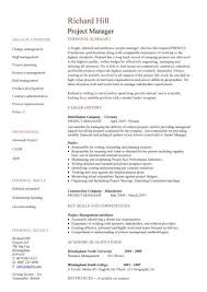 A One Page Version Of Very Popular CV Design Simple Project Manager
