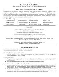 International Financial Analyst Resume Skills