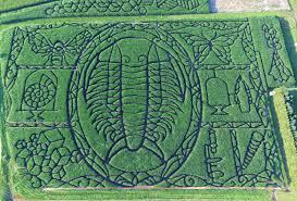 Pumpkin Farms Wisconsin by 2017 Maze Treinen Farm Corn Maze U0026 Pumpkin Patch