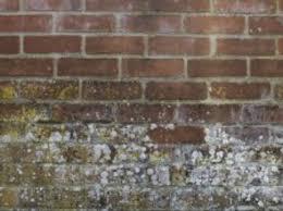 etanchéité des murs et sols matériaux menuiserie leroy merlin