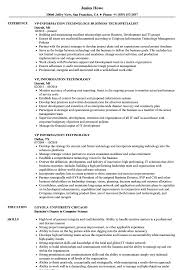Vp Information Technology Resume Samples Velvet Jobs Curriculum Vitae Examples S