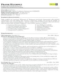 Sample Usajobs Resume Example Of A Federal Government
